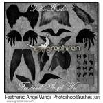 دانلود براش فتوشاپ بال فرشته Angle Wings Photoshop Brushes