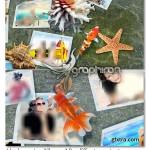 پروژه افتر افکت نمایش آلبوم عکس زیر آب Underwater Album