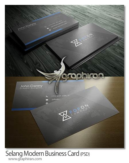 Selang Modern business card