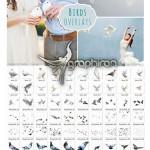 ۷۰ تصویر کلیپ آرت کبوتر Birds Photoshop Overlays PNG