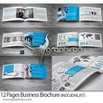 دانلود طرح لایه باز بروشور تجاری ۱۲ صفحه ای برای ایندیزاین