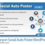 افزونه وردپرس پست خودکار به شبکه های اجتماعی Social Auto Poster v2.2.1