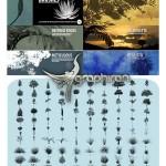 دانلود ۱۰۰ براش فتوشاپ درخت و گیاه Hand Traced Tree and Plant