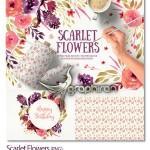 Scarlet Flowers پک طرح های آبرنگ گل اسکارلت فرمت PNG