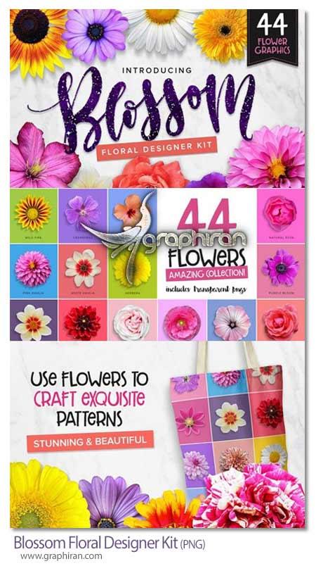 تصاویر PNG گل های زیبا