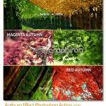 اکشن فتوشاپ افکت رنگ های پاییز Authum Effect Photoshop Action