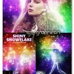 اکشن فتوشاپ دانه های برف درخشان Shiny Snowflake Photoshop Action