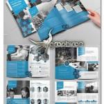 دانلود قالب آماده و لایه باز بروشور تجاری و شرکتی ایندیزاین