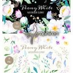 کلیپ آرت المان های گل صد تومانی Watercolor Clipart Peony White