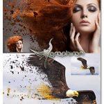 اکشن فتوشاپ انتشار رنگ های عکس Diffusion Photoshop Action