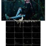 مجموعه تصاویر پوششی ۵K از کرم شب تاب ۵K Fireflies Vol.1