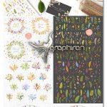 دانلود پک عظیم طرح های گل و گیاه وکتور Flowerly Collection