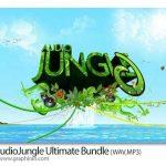 دانلود مجموعه ۵۱ موزیک بی کلام سبک های مختلف از AudioJungle