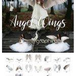 دانلود ۱۵ عکس PNG دوربری شده بال فرشته Angel Wings Overlays