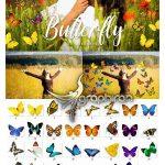 دانلود 30 عکس PNG برش خورده انواع پروانه Butterfly Overlays