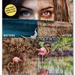 ewMosaic پلاگین فتوشاپ ساخت افکت موزاییکی سبک رومی روی تصاویر
