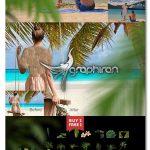 دانلود ۵۱ عکس PNG درخت های استوایی Tropic Tree Branch Photo Overlays