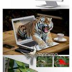 اکشن فتوشاپ بیرون زدن سوژه از کادر ۳D Photo Illusion Photoshop Action