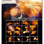 دانلود پک تصاویر پوششی بوکه های طلایی ۵K Golden Bokeh Overlays