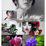 اکشن های فتوشاپ نگه داشتن رنگ انتخابی در عکس Auto-Selective Color