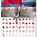 دانلود ۷۰ عکس پوششی پارچه با کیفیت بالا Flying Fabric Overlays