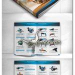 دانلود طرح کاتالوگ تبلیغاتی محصولات لایه باز 12 صفحه ای سایز A4