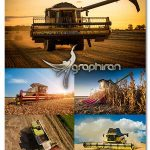 دانلود تصاویر استوک کشاورزی و درو کردن و برداشت محصول با کیفیت بالا