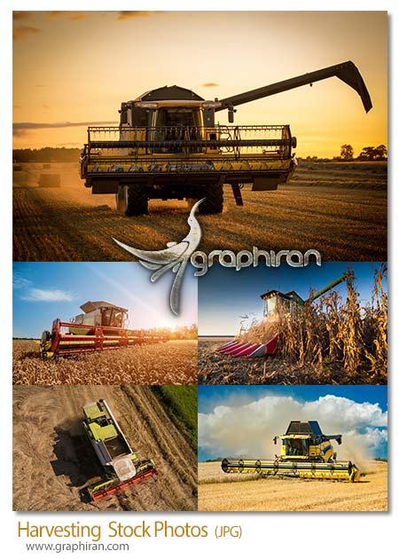 دانلود تصاویر استوک کشاورزی