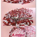 دانلود پروژه افترافکت پخش شدن گل و نمایش لوگو Flowers Logo V1