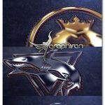 پروژه افترافکت نمایش لوگوی طلایی و نقره ای Silver and Gold Logo