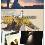دانلود رایگان پک پروژه پریمیر، ترانزیشن و پریست رنگی فیلم عروسی
