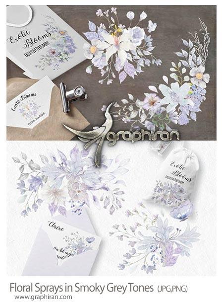 دانلود مجموعه تصاویر گل های زیبای بفنش