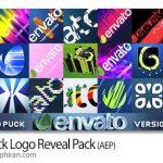 دانلود پروژه افترافکت 21 نوع نمایش لوگو جذاب Quick Logo Reveal Pack v1.2