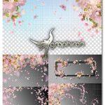 دانلود طرح های وکتور شکوفه های بهاری گیلاس Spring Cherry Vector Blossom
