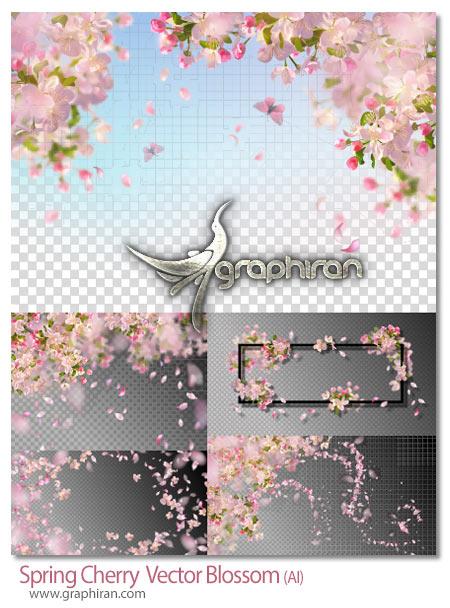 دانلود طرح های وکتور شکوفه های بهاری گیلاس