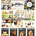 دانلود مجموعه تصاویر وکتور مواد غذایی لبنی، مرغ و ماهی، تخم مرغ، شیر و غیره