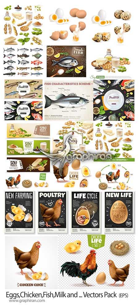 دانلود مجموعه تصاویر وکتور مواد غذایی لبنی، مرغ و ماهی