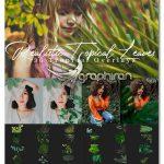 دانلود 30 عکس برگ گیاهان گرمسیری PNG دوربری Realistic Tropical Leaves Overlay