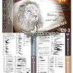 دانلود مجموعه براش طراحی برای ایلوستریتور Bundle of Brushes for Illustrator
