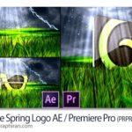 دانلود پروژه پریمیر نمایش لوگو در طبیعت فصل بهار Nature Spring Logo