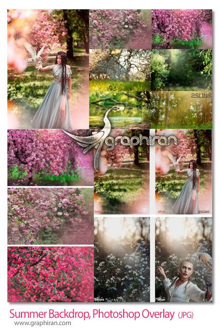 دانلود مجموعه بک دراپ و پس زمینه باغ بهاری و شکوفه