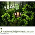 دانلود 10 آهنگ بی کلام ورزشی تند هیجان انگیز و آرام AudioJungle Sports Musics
