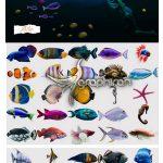 دانلود 40 عکس PNG دوربری انواع ماهی های دریایی Sea Fish Overlays