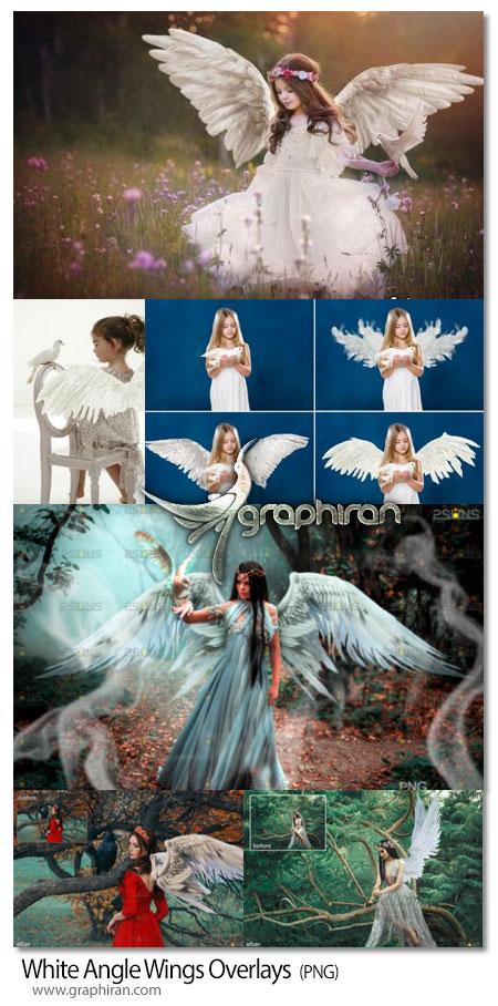 دانلود 35 عکس PNG بال سفید فرشته