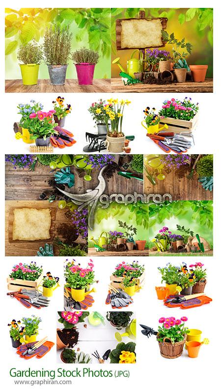 دانلود تصاویر استوک باغبانی و کاشت گل